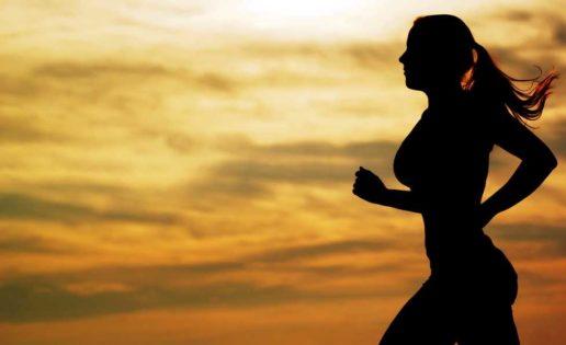 Soy runner