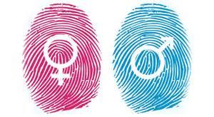 Violencia machista y feminista (II)