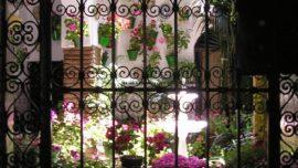 48 Horas de Vacaciones: Navidad en los Patios de Córdoba