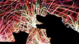 Fuegos artificiales sin ruido, el invento para las mascotas