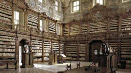 El paraíso como biblioteca