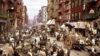 Nueva York: el orden del caos