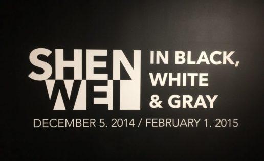 Shen Wei. In Black, White & Gray. Miami