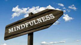 Mindfulness, meditación y viaje interior