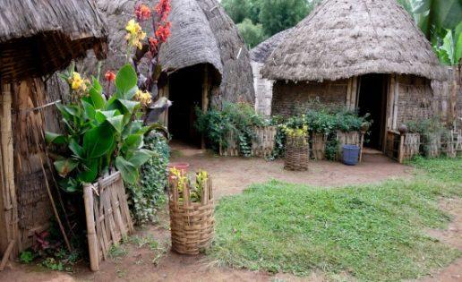 Los dorze, o el arte de vivir con la casa a cuestas