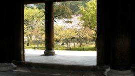 Kioto en flor