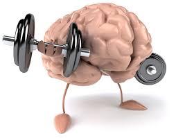 La mejor pastilla para adelgazar está en el cerebro