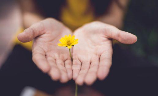 Lo que la meditación hace con tu mente y tu cuerpo