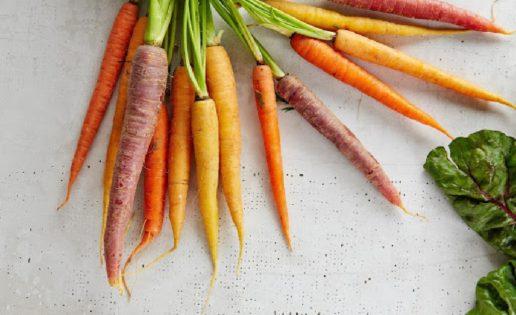 Beneficios De La Zanahoria Es Cierto Que Aporta Vista De Lince Y Un Bronceado Estupendo ¡échale un vistazo a nuestra guía ! beneficios de la zanahoria es cierto