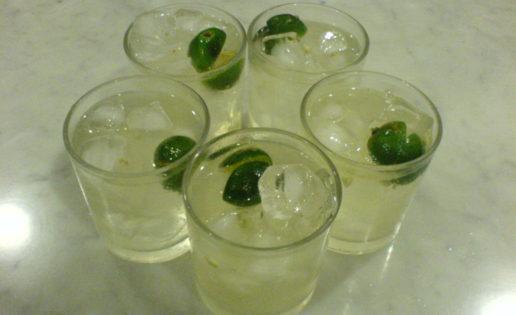 El gin tonic de sus señorías