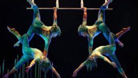 Política no, es circo