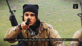20.000 combatientes del Daesh habrían sido eliminados