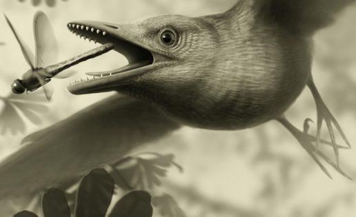 Las aves que revoloteaban por encima de las cabezas de los dinosaurios