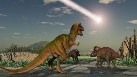 El mundo tardó dos millones de años en recuperarse del impacto que acabó con los dinosaurios