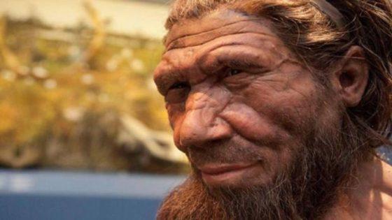 Un nuevo estudio sostiene que la «mala suerte» acabó con los neandertales