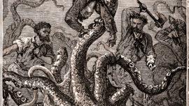 El genoma del calamar gigante, casi tan grande como el humano