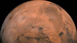 Las moléculas orgánicas halladas en Marte podrían ser de origen biológico