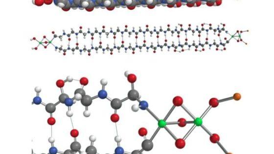 Polémica científica por la aparición de una proteína extraterrestre en un meteorito