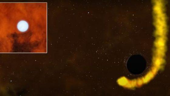 La estrella que sobrevivió a un agujero negro (y que seguramente habría preferido no hacerlo)