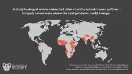 Coronavirus: ¿Dónde surgirá la próxima pandemia?