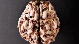 Cerebro erótico: caricias que despiertan el deseo