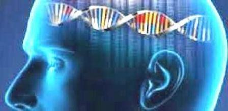 Identifican once nuevos genes asociados al riesgo de Alzheimer