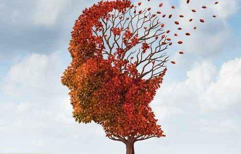 Un test sanguíneo para detectar el riesgo de alzhéimer