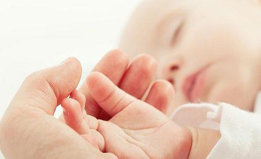 El amor materno protege el cerebro