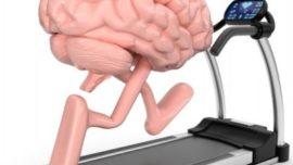 Caminar mantiene al cerebro en forma