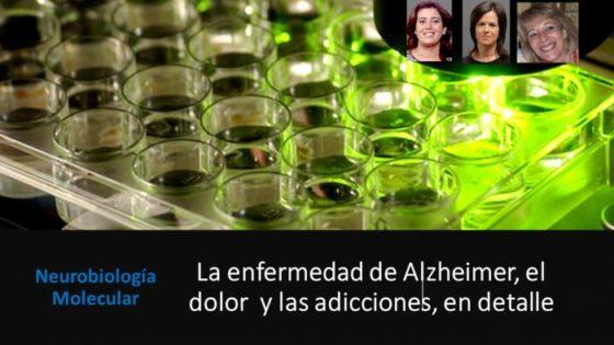 Enfermedad de Alzheimer, dolor y adicción, en detalle