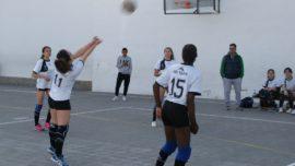 Las mejores imágenes del partido de voleibol juvenil femenino entre Raimundo Lulio y San Patricio Soto