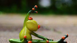 ¿Por qué las ranas no tienen celulitis?