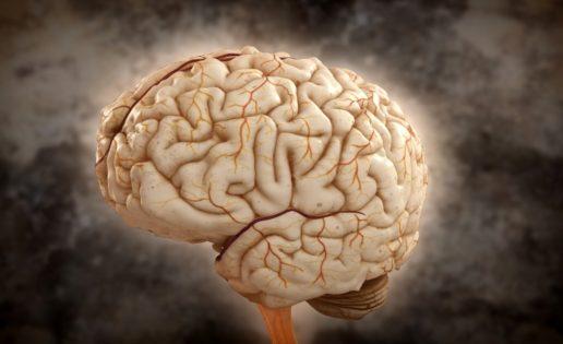 Podcast de cabeza y cerebro