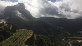 Producto y cocina en Gran Canaria