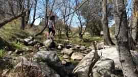 Sí, hay un Madrid secreto: la ruta de los molinos del río Perales, en Navalagamella