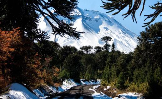 Araucanía, naturaleza primigenia