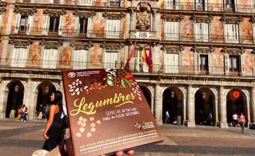 Madrid, Plaza Mayor de las legumbres
